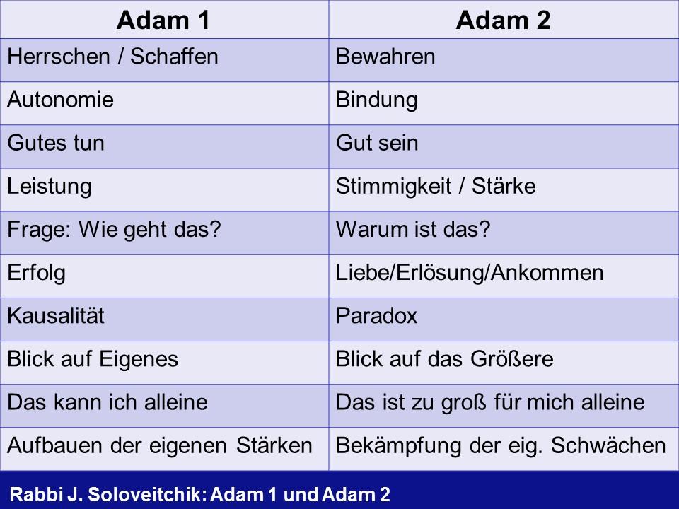 Adam 1 vs Adam 2