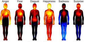 emotions_bodytemp